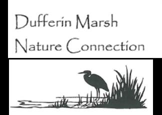 Dufferin Marsh Nature Connection Logo